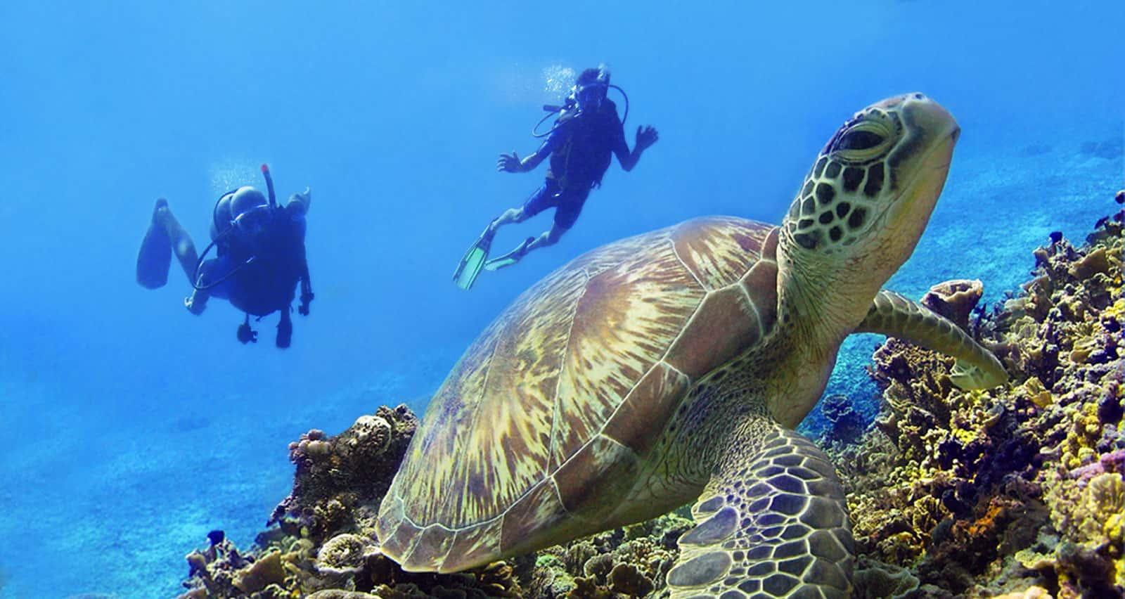 Gili Islands, Indonesia