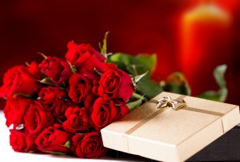 The Red Rose has multiple meanings for Valentine's Day