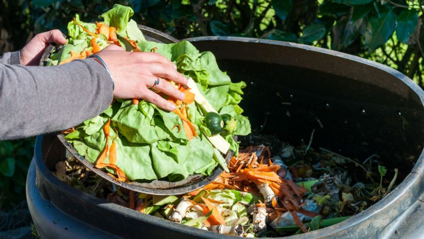 Over 2,000 pounds of edible food is thrown away in the U.S.A.