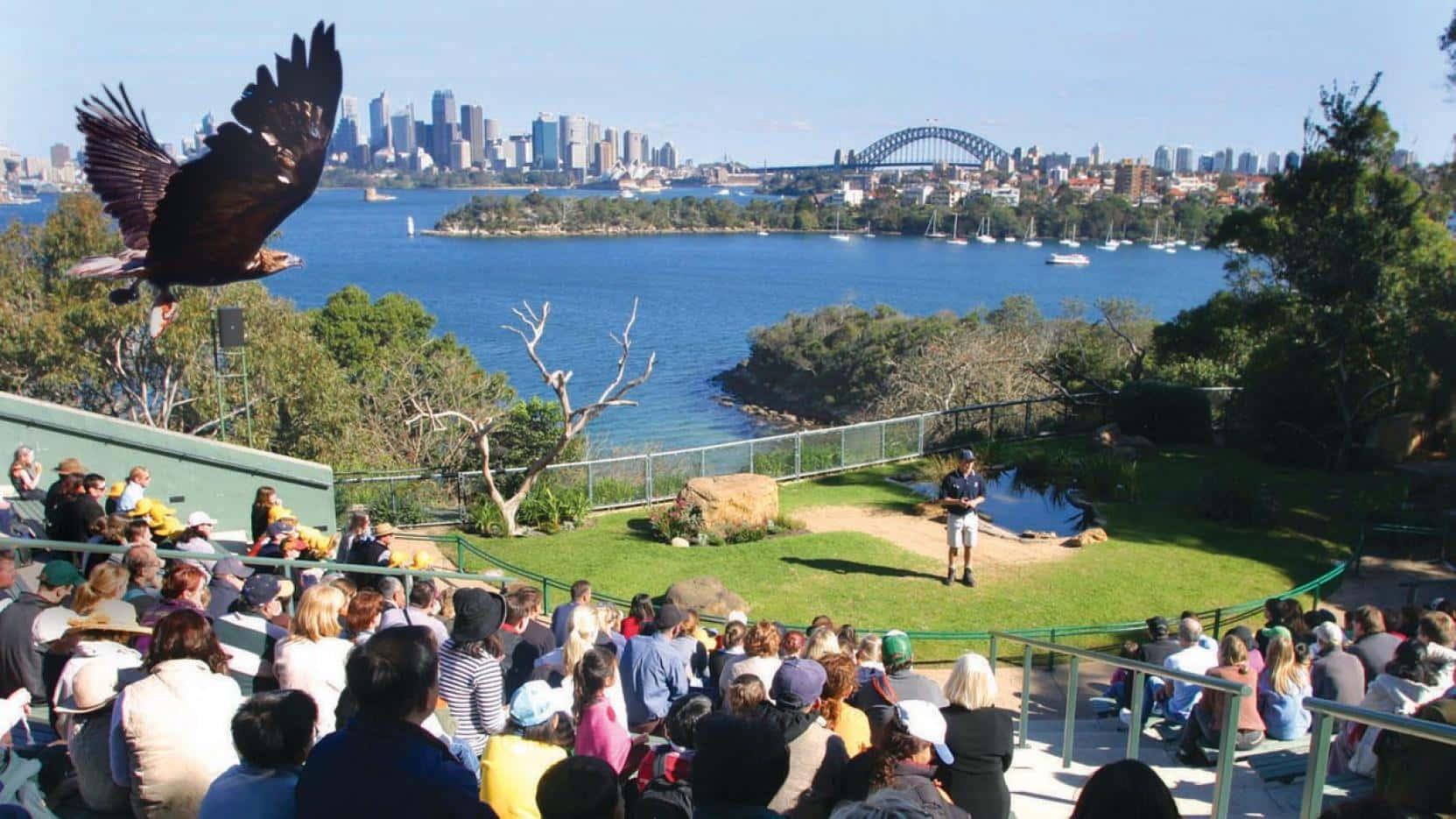 Taronga - Sydney, Australia