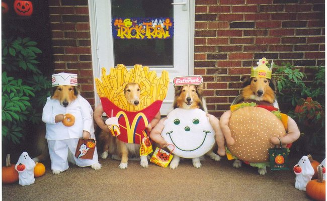 The Fast Food Gang