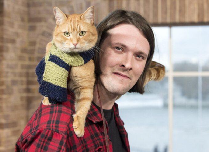 Street Cat Bob – Estimated Earnings £500k