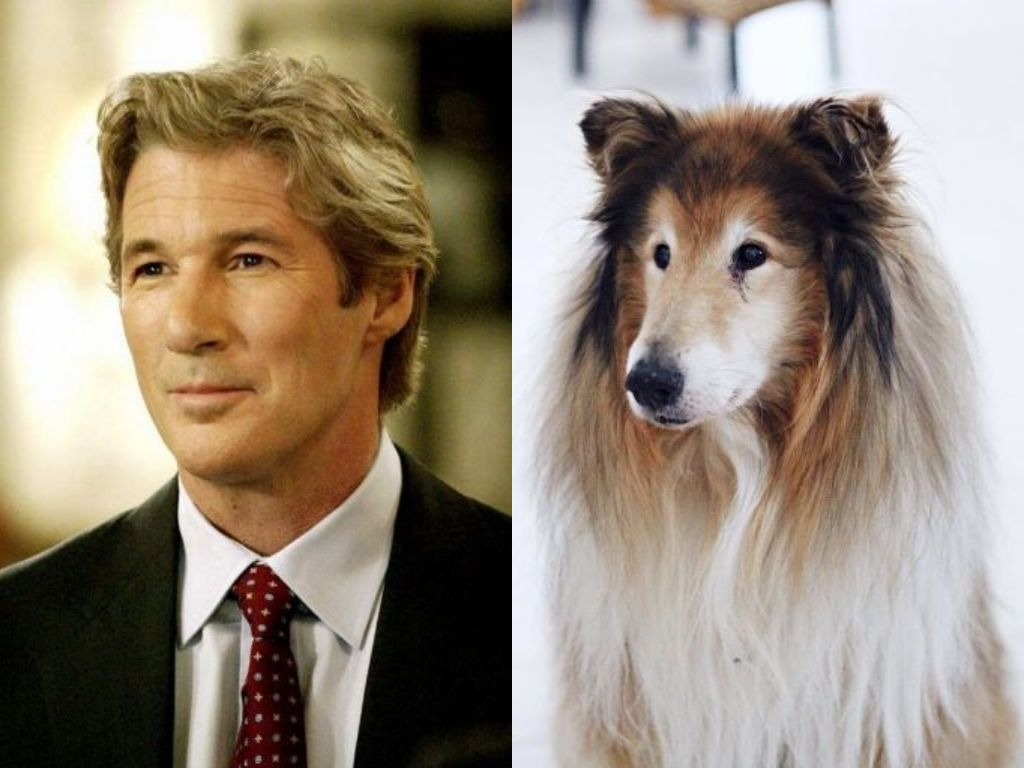 Celebrities Who Look Like Their Dogs
